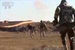 """俄称与美联手共袭叙利亚极端组织 """"国际联盟"""":胡扯"""