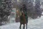 内蒙古突降暴雪 快递员骑马送包裹