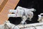 计划有变?美国绕月飞船首飞或搭载宇航员