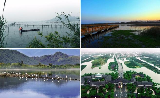 浙江第二批省重要湿地名录出炉 宁波这些湿地上榜