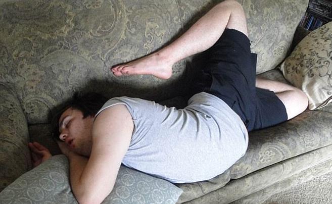 别再说自己困成狗 看看这些真正的睡神!