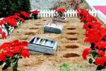 比房价贵5倍 有户口才能买……苏州对墓地也限购了