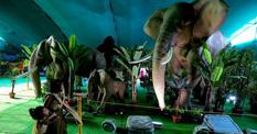 印度举办机器动物展