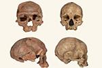 最早智人化石出土 有助解开人类之谜