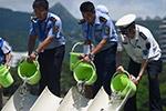 世界海洋日:幼苗放归大海