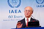 国际原子能机构将加强对朝鲜核计划的分析工作