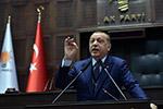 土耳其总统批评多国联合制裁卡塔尔