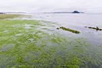 持续强降雨致鄱阳湖水位快速回升