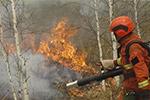 内蒙古大兴安岭北部原始林区一日内发生6起森林火灾
