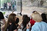柏林:争先恐后看熊猫