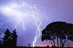 印度北部发生多起雷击事件 至少19人死亡
