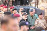 伊拉克总理正式宣布摩苏尔全面解放