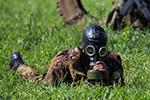 """""""侦察尖兵""""国际军事比赛在俄举行"""