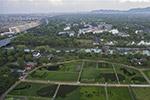 """杭州:湿地旁的""""动物园""""稻田"""