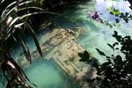 惊奇!游客在帕劳河底发现二战日本失事飞机