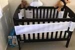 惊魂一刻澳洲父亲在打扫婴儿床时发现毒蛇