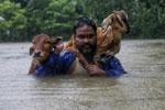 尼泊尔连降暴雨 洪水已造成49人死亡
