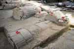 江西抚州发现明代戏剧家汤显祖墓葬具体位置