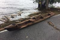 """飓风""""艾尔玛""""过境后美佛州河畔惊现百年独木舟"""