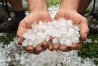 韩国多地遭遇大范围冰雹天气 农作物受灾严重