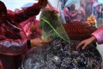 重庆蟹农蒸近千只大闸蟹宴请当地民众