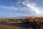 秋日里的大美青海