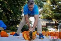 美国男子一分钟用锤子打碎31个南瓜 破世界纪录