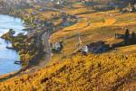 瑞士拉沃葡萄园深秋景色迷人