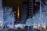 """东京点亮百万盏""""圣诞灯饰"""" 光影温暖寒冬(图)"""