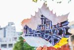 落叶玩出新花样 大学生绘制校园美景树叶画