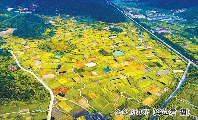 东吴:晋级鄞州首个全国文明镇