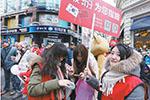 韩媒称中国旅行团将抵济州岛 旅行社表示没恢复团队游