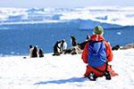 中国赴南极旅游人数9年暴涨40倍 中老年人成主力