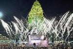 日本神户点亮30米高圣诞树 赏绚烂灯火
