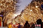 圣诞灯饰装点巴黎街道:如同繁星掉落枝桠间