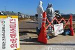 韩再现禽流感疫情 检疫人员已扑杀约20万家禽