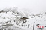 瑞士境内阿尔卑斯山发生雪崩 3名登山者遇难