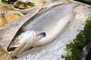 宁波口岸进口水产品鱼类独占六成 教你四个步骤选购