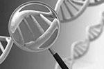 子孙后代信息都可能被公开 基因隐私告急!