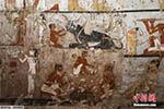 埃及吉萨现4400年前古墓 壁画描绘墓穴女主人故事