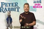 《比得兔》预售开启 兔界大佬颠覆形象搞怪