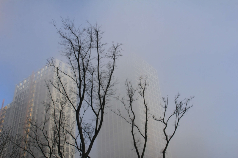 甬城大雾弥漫