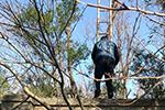 上海野生动物园现4人团伙助人逃票2年 派出所:没空管