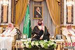 """沙特埃及投100亿美元在西奈半岛合建""""超级城市"""""""