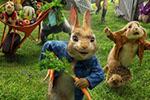 这只全世界最有名的兔兔不卖萌 只耍狠