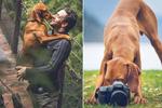 加拿大小狗与主人环游世界
