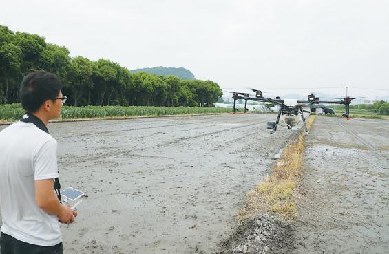 无人机助力 家庭农场