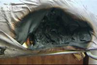 iPhone8半夜自燃床垫烧出30cm窟窿 女主人被猫叫醒