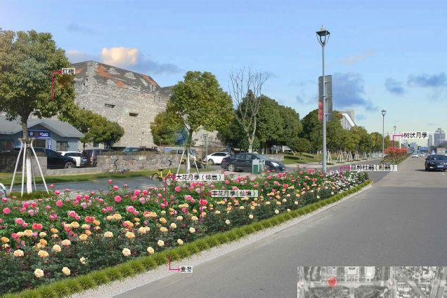 入春以来,宁波开启了繁花似锦模式,樱花、海棠、红叶李、杜鹃花各种花朵在城市各个角落轮番次第开放,让人目不暇接。昨天,记者从市城管园林部门了解到,为进一步加快绿盈名城,花漫名都建设,切实提高城市绿地品位和档次,今年我市将着力打造一路一花,一路一品,计划建成多条特色花卉景观大道,打造城市多彩迎宾带。   目前,我市中心城区多条主要道路正在推进以月季为主要观赏花卉的景观大道改造,如海曙的丽园北路、鄞州区的首南中路、江北区的大庆南路等。   据城管园林部门相关负责人介绍,江北区大庆南路月