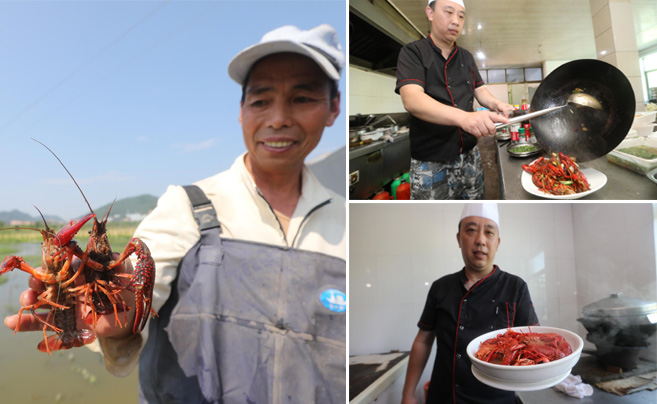 又到了龙虾季 宁波人爱吃的那些口味都是怎么做的